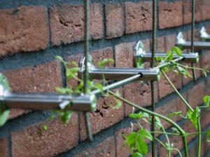 Ingezoomde foto van klimkabels voor gevelplanten