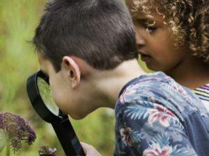 Twee kinderen die met een vergrootglas naar een bloem kijken