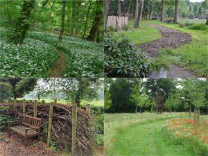 Vier afbeeldingen: wandelpaden, klaprozen, bosrijke wandelroutes, houten bank